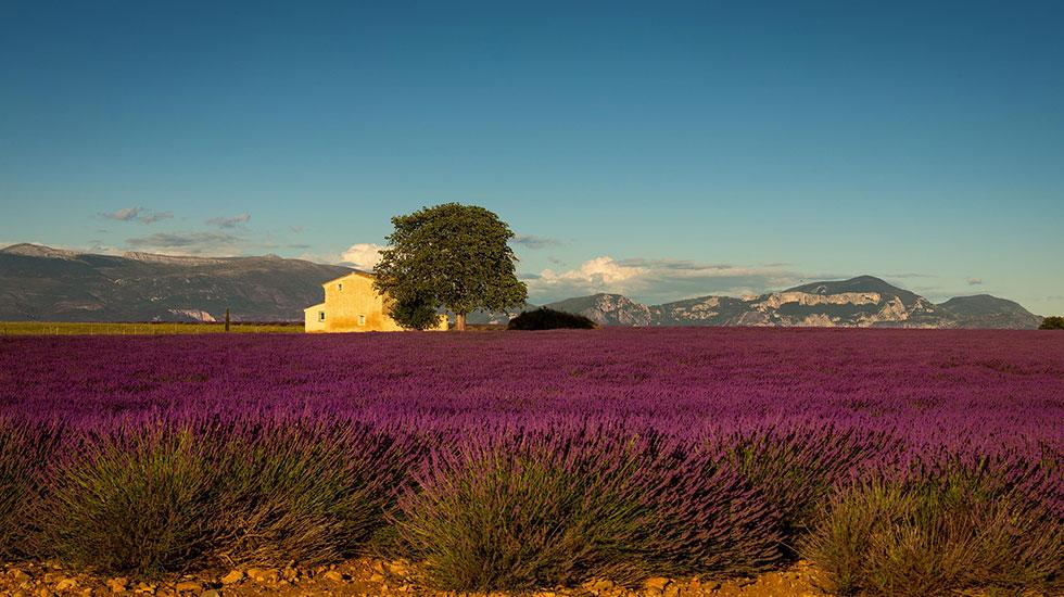 Provence - Tour Du Lịch Pháp