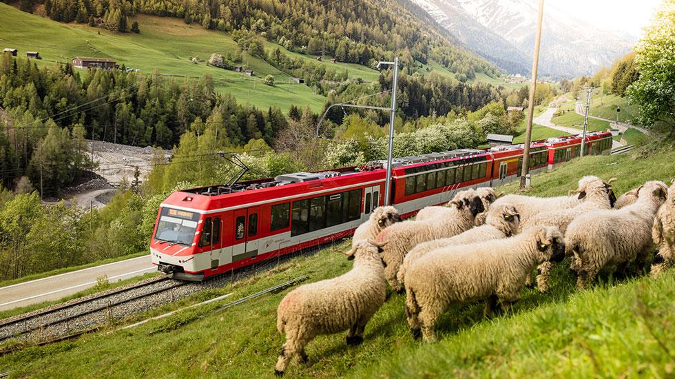 đường lên đỉnh núi Rigi - Du lịch Thụy Sĩ